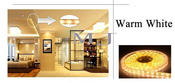 Luz ligera flexible del decoraiton del LED